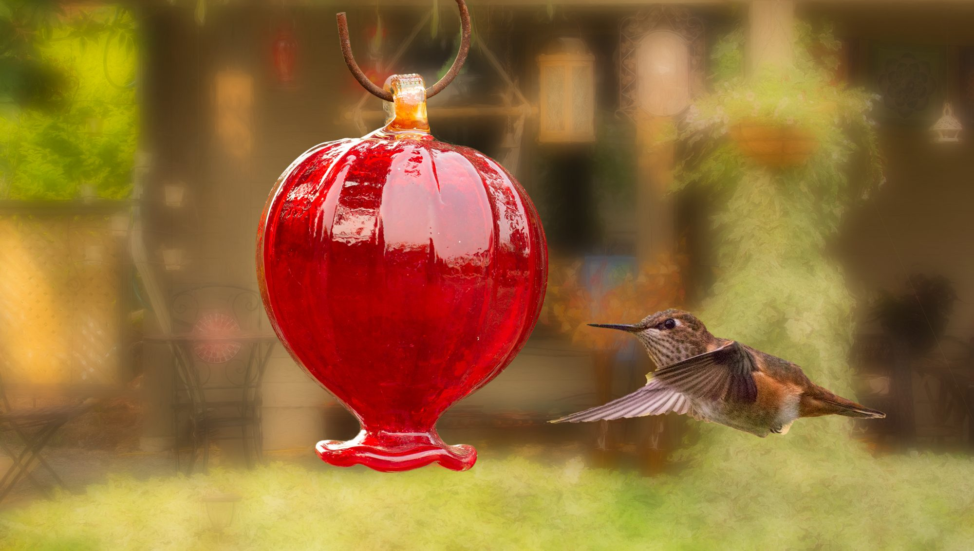 Hummingbird Haven B&B